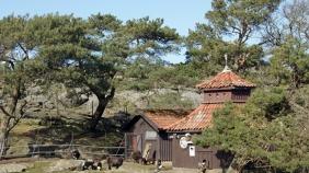 Slottskogen 12