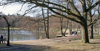 Slottskogen 18